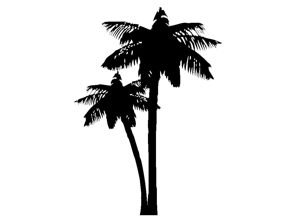 Wandtattoo garderobe palme f r bad und wohnbereich for Wandfolie schwarz